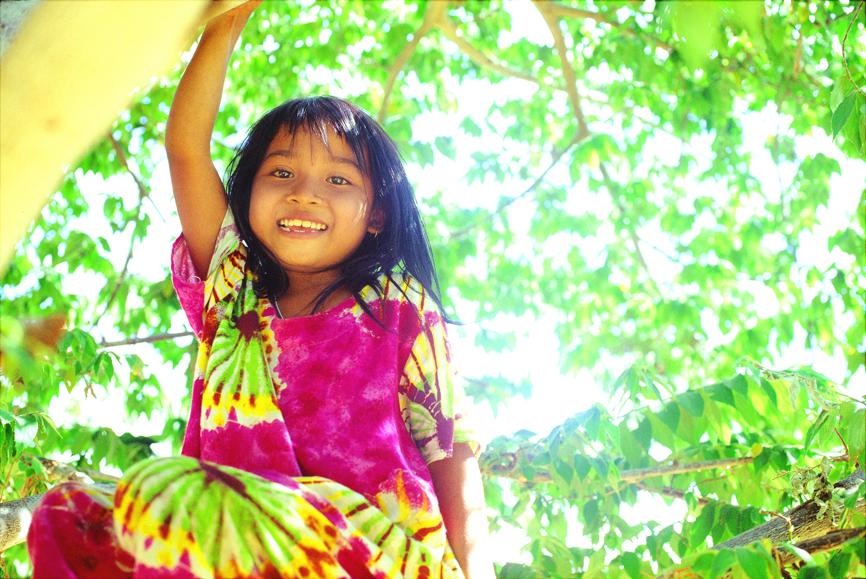 カンボジア 木の上子供