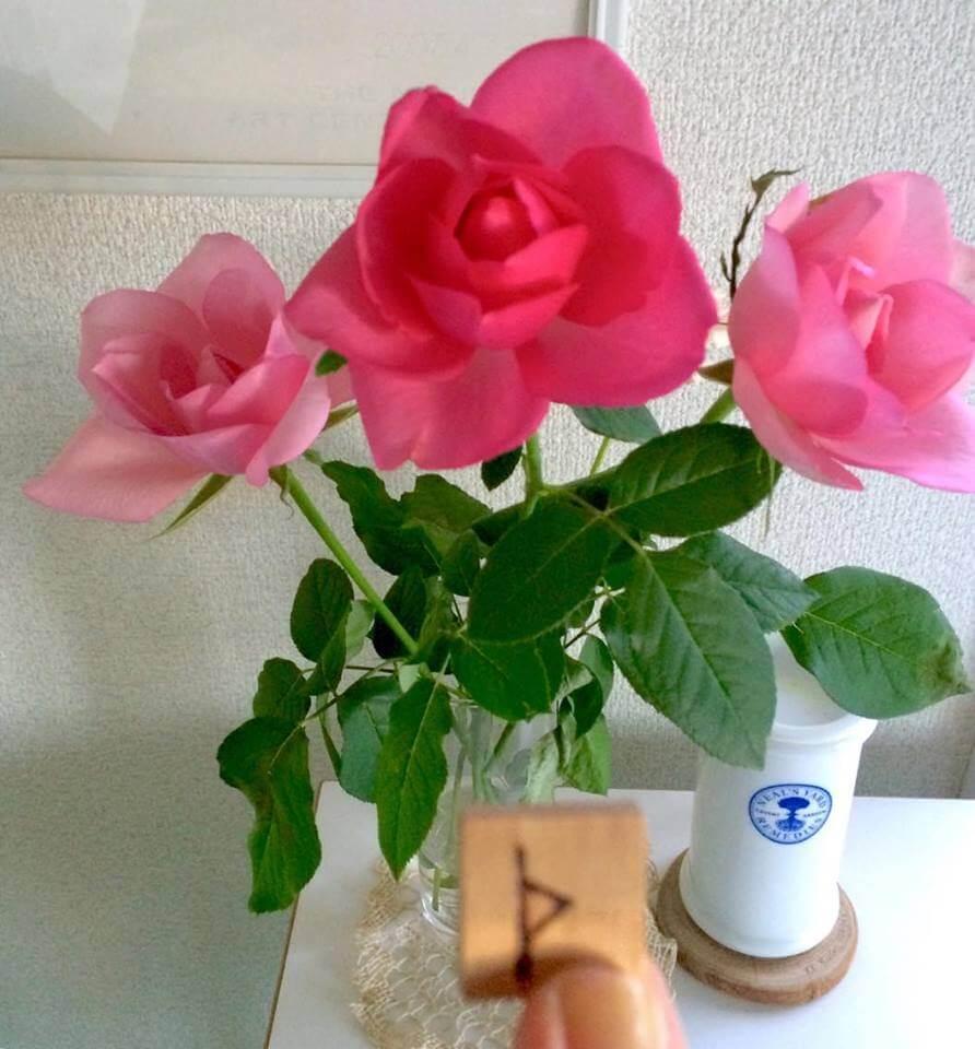 今日のルーンは薔薇のとげのルーン