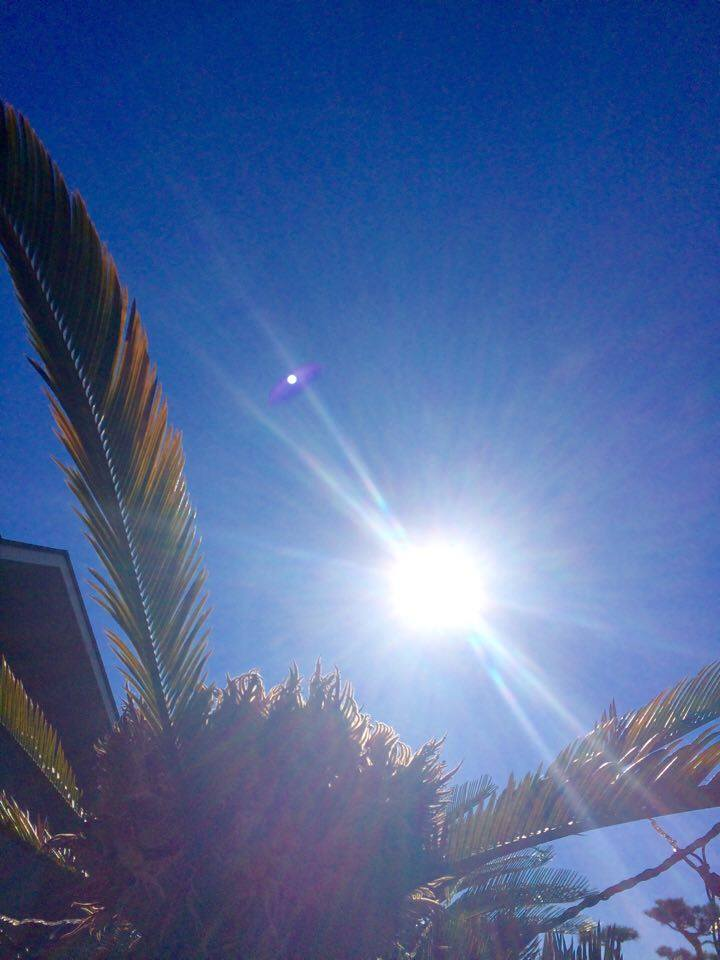 教会の太陽