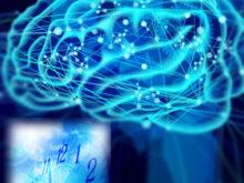 mfm脳と時間