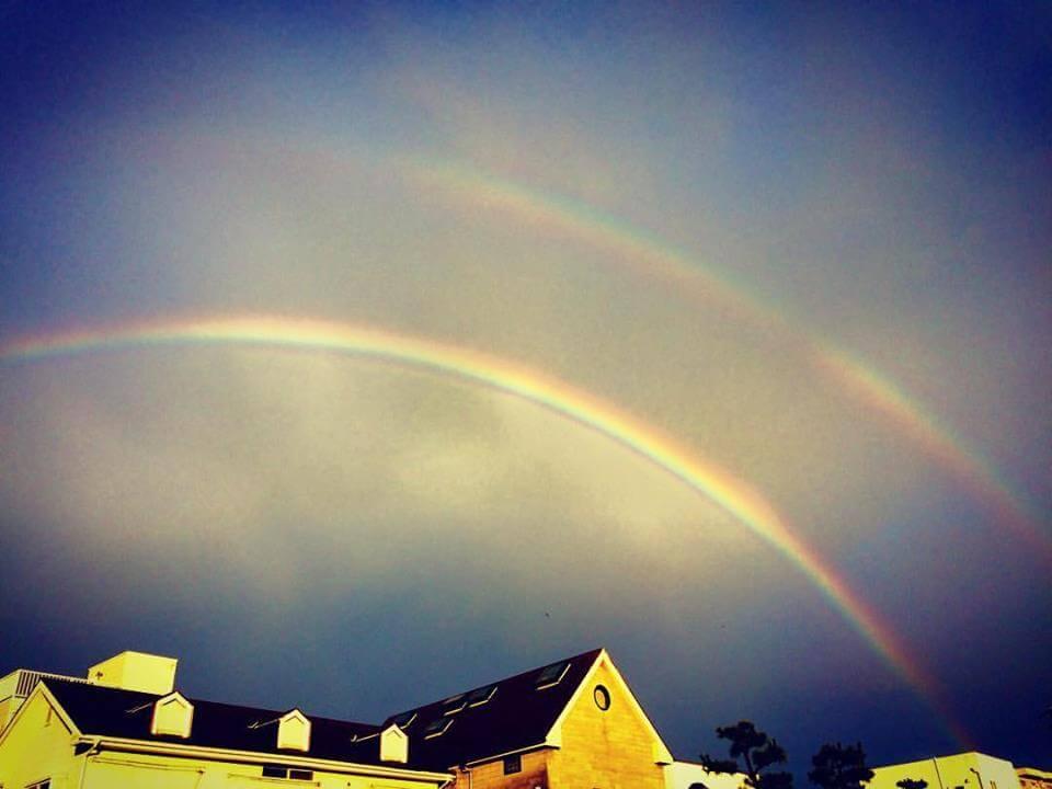 虹を追いかけて_nidの前