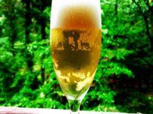 森林浴とビール