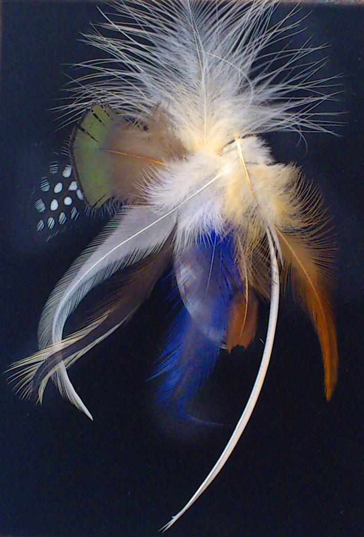 羽根サンプル