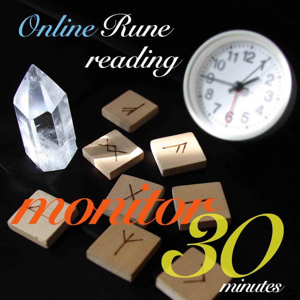 オンラインモニター30