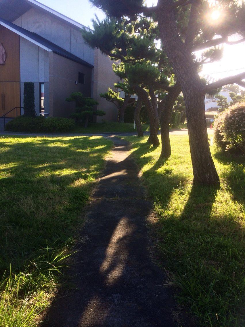 教会のアンの小径