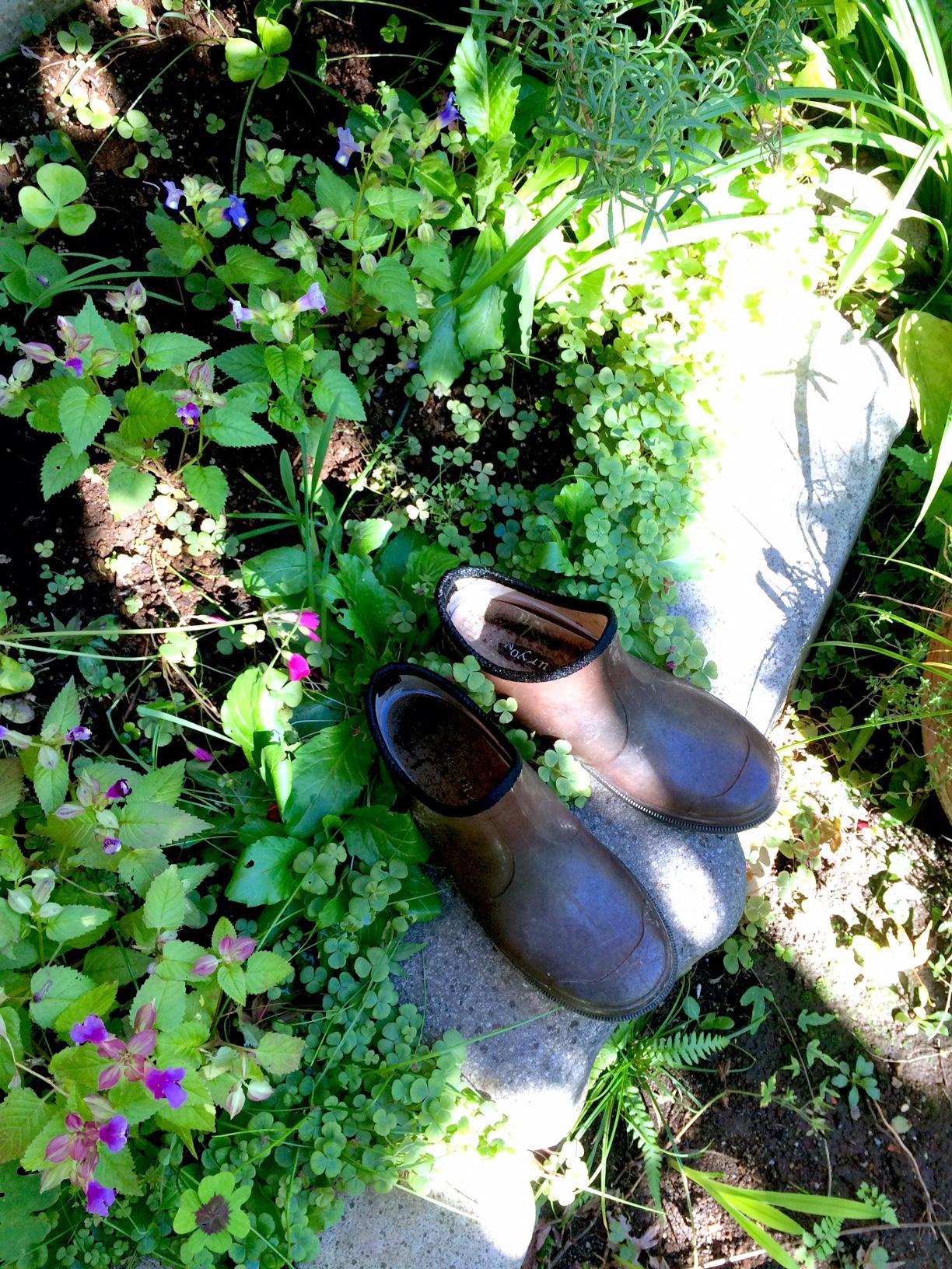 足柄山_雨靴