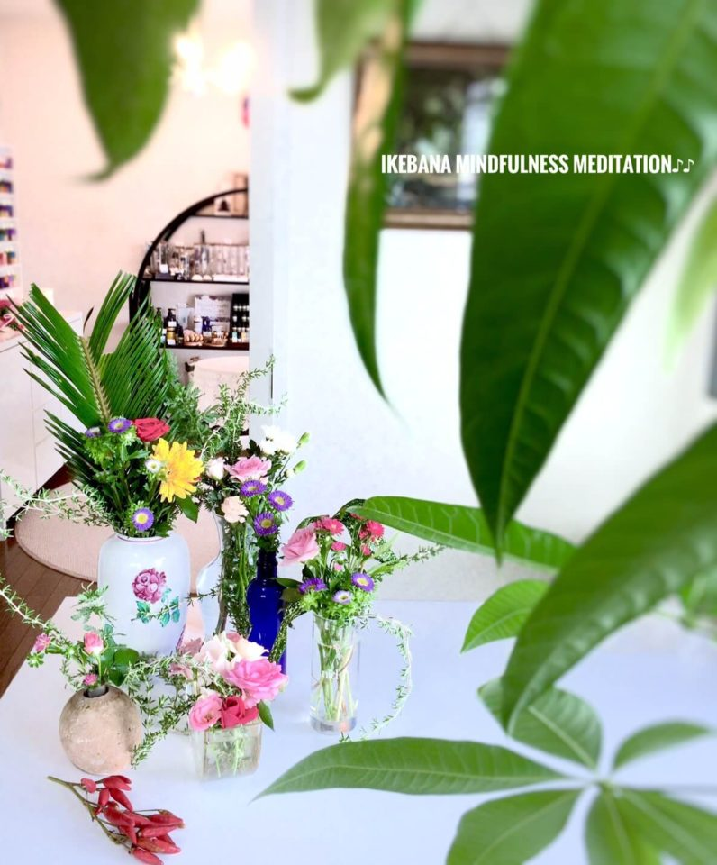 花、パキラから覗いて