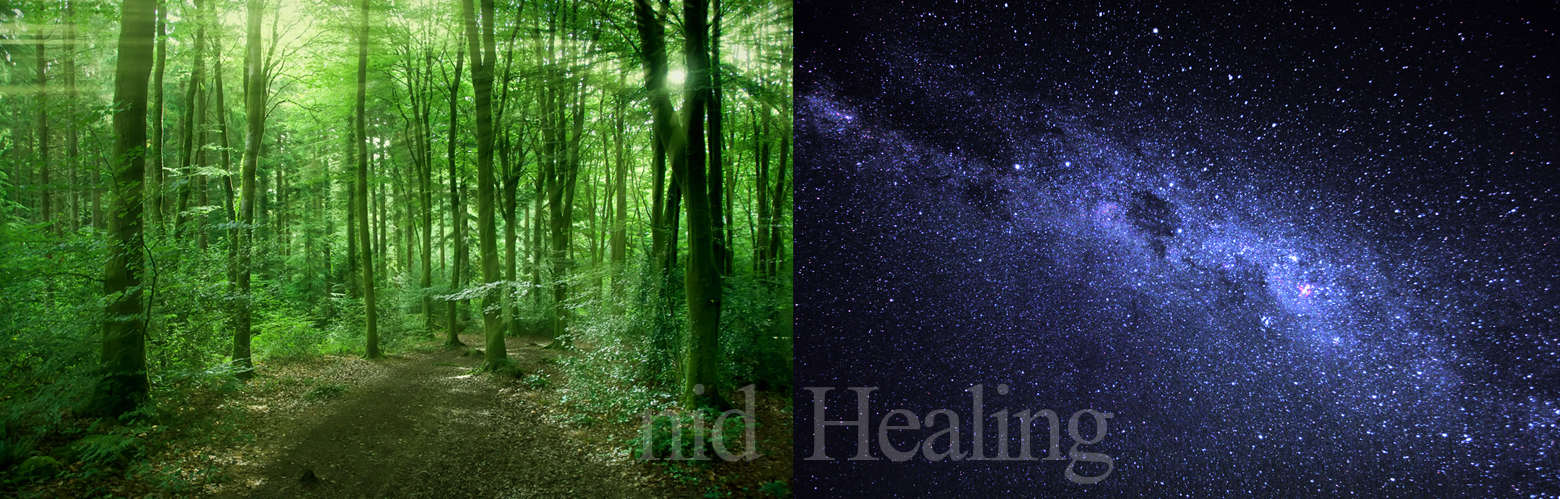 nid-healig-森林&宇宙