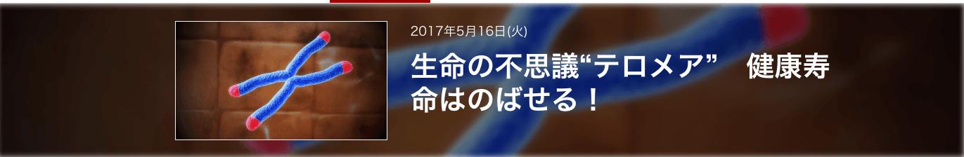NHK テロメア画像