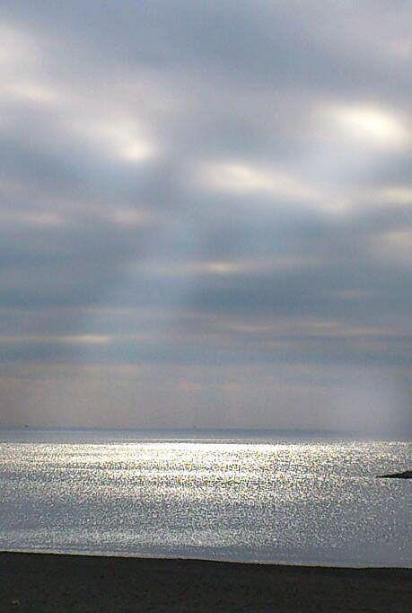 海の光2014_2_23