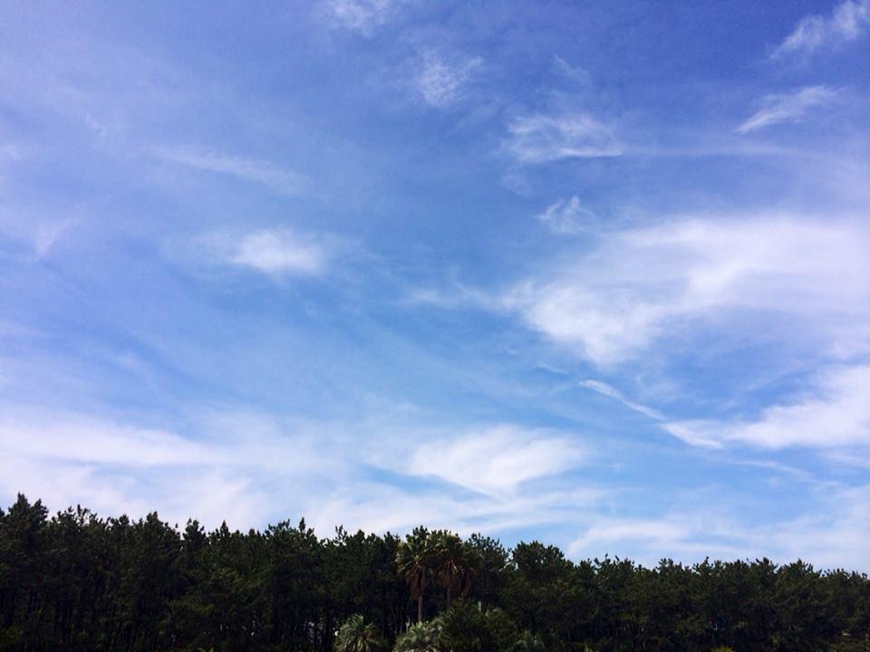 湘南海浜公園2014_5_27_2