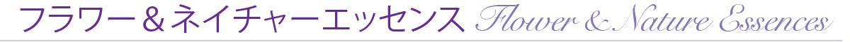 2nd_ショピング エッセンスタイトル