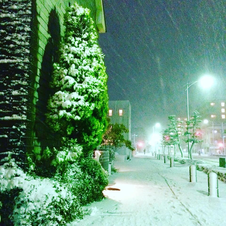 NYPSWS2018.1.23_前日の雪