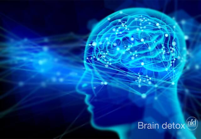 脳シルエット有_ Brain detox