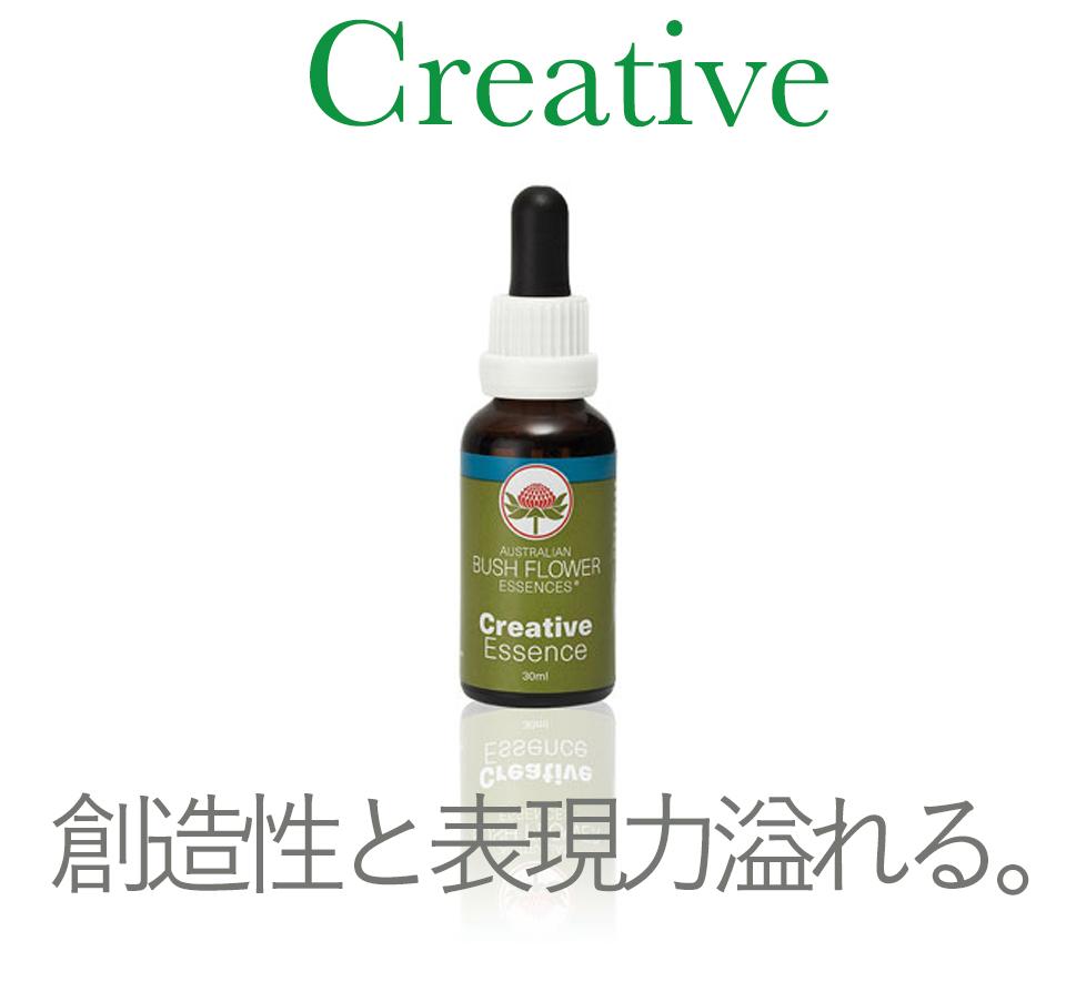 クリエイティブで創造力と表現力